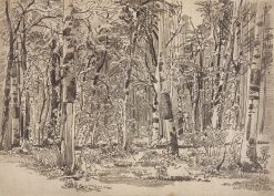 Birch Grove | Ivan Ivanovich Shishkin | Oil Painting
