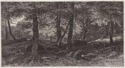 Beech Grove | Ivan Ivanovich Shishkin | Oil Painting