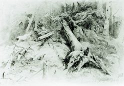 Windfall | Ivan Ivanovich Shishkin | Oil Painting
