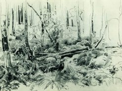 In the Forest | Ivan Ivanovich Shishkin | Oil Painting