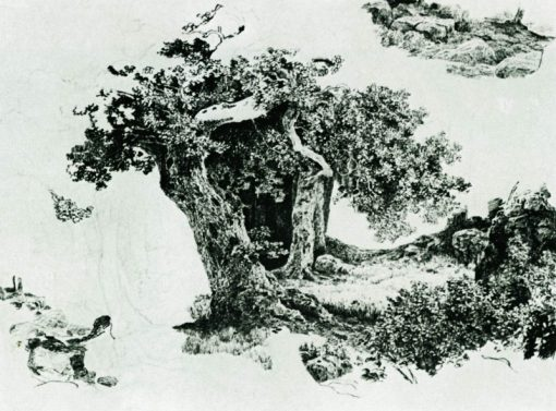 Trees and Rocks | Ivan Ivanovich Shishkin | Oil Painting