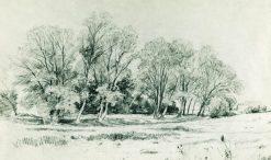 Trees in the Field | Ivan Ivanovich Shishkin | Oil Painting