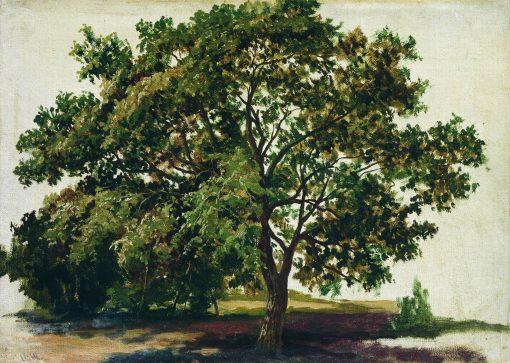 Oak Tree | Ivan Ivanovich Shishkin | Oil Painting
