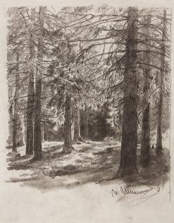 Fir Trees in the Sunlight | Ivan Ivanovich Shishkin | Oil Painting