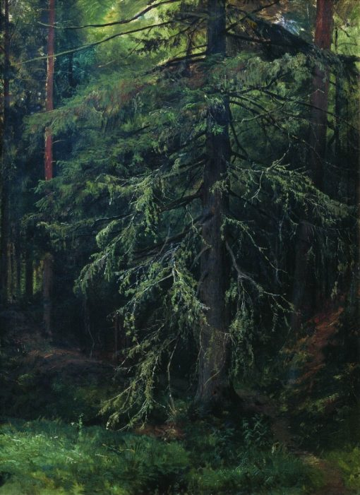 A Fir Tree | Ivan Ivanovich Shishkin | Oil Painting