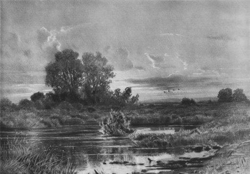 An Overgrown Pond   Ivan Ivanovich Shishkin   Oil Painting