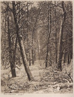 Winter | Ivan Ivanovich Shishkin | Oil Painting