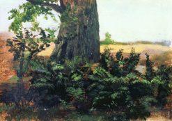 Ferns | Ivan Ivanovich Shishkin | Oil Painting