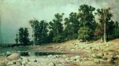 Grove in Sestroretsk | Ivan Ivanovich Shishkin | Oil Painting