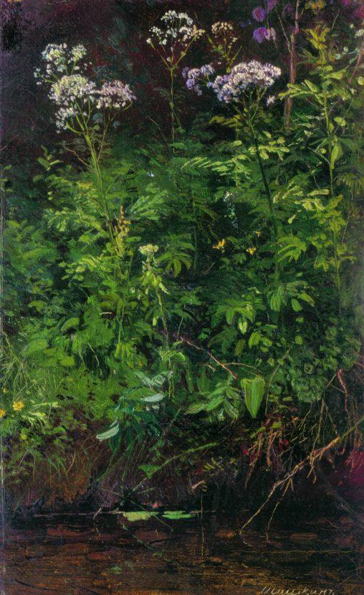 Wild Flowers | Ivan Ivanovich Shishkin | Oil Painting