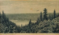 The Kama River near Elabuga | Ivan Ivanovich Shishkin | Oil Painting