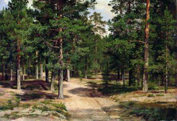 Pine Forest in Sestroretsk | Ivan Ivanovich Shishkin | Oil Painting