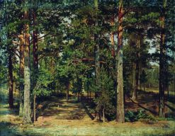Pine Forest | Ivan Ivanovich Shishkin | Oil Painting