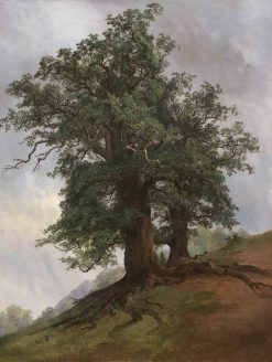 An Old Oak | Ivan Ivanovich Shishkin | Oil Painting