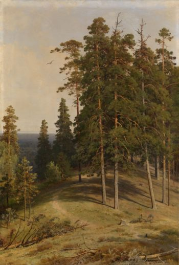 The Pine Forest   Ivan Ivanovich Shishkin   Oil Painting