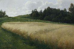 The Oat Field | Adolf Kaufmann | Oil Painting