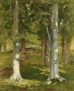 Beech Trees   Charles Hutton Lear   Oil Painting