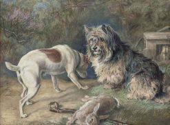 Rabbiting | David George Steell | Oil Painting