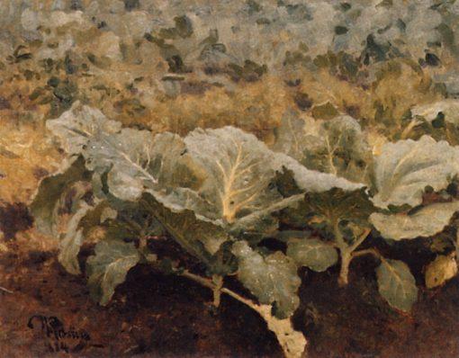 Cabbage   Ilia Efimovich Repin   Oil Painting