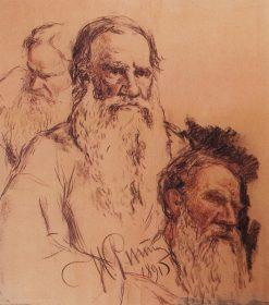 Studies of Leo Tolstoy | Ilia Efimovich Repin | Oil Painting