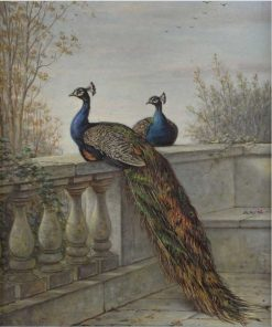 Two Peacocks | Henry Charles Bryant | Oil Painting