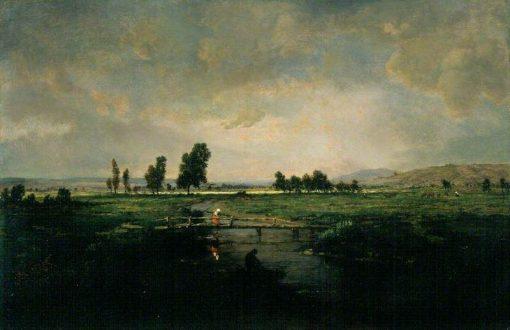 Un Marais dans les Landes