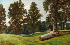 Forest Scene with Fallen Trunk | William James Muller | Oil Painting