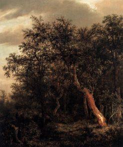 Glade in a Wood | Jacob van Ruisdael | Oil Painting
