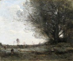 The Beech Tree | Jean Baptiste Camille Corot | Oil Painting