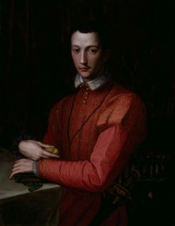 Portrait of Francesco de'Medici | Alessandro Allori | Oil Painting