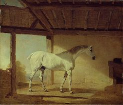 The Earl of Coventry's Horse | Benjamin Marshall | Oil Painting
