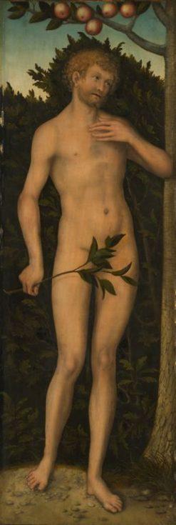 Adam | Lucas Cranach the Elder | Oil Painting