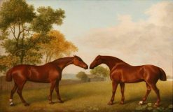 Two Horses in a Paddock | George Stubbs | Oil Painting