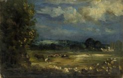 Britford Vale: Water Meadows | David Charles Read | Oil Painting