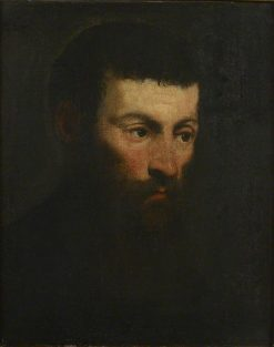 Head of a Bearded Man | Tintoretto | Oil Painting