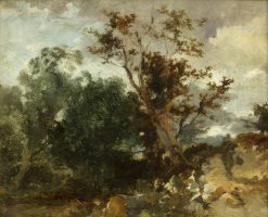 Study of Trees | William James Muller | Oil Painting