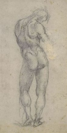 Study of the Nude | Luca Signorelli | Oil Painting