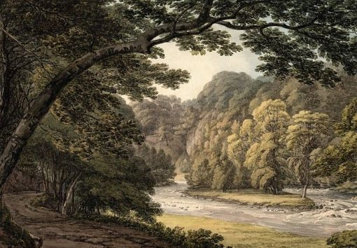 A River Gorge at Downton