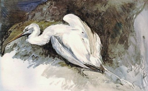 White Crane shot at Xanthus | William James Muller | Oil Painting