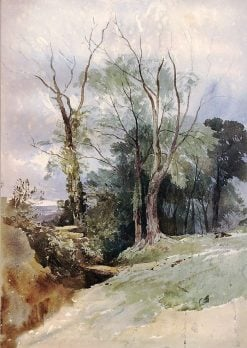 Ash Trees and Elms | William James Muller | Oil Painting