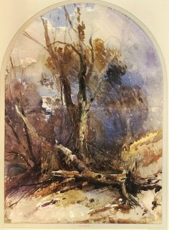 Trees near Bristol - Winter | William James Muller | Oil Painting