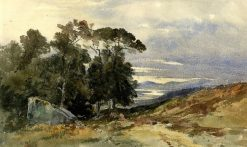 Roe near Conway | William James Muller | Oil Painting