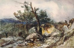 Burnt Pines on the road to Pinara | William James Muller | Oil Painting