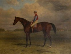 Bay Racehorse with a Jockey on Newmarket Racecourse | Harry Hall | Oil Painting