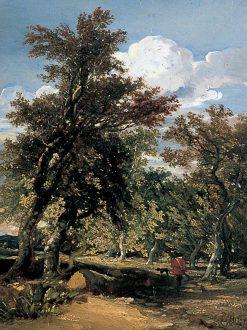 Woodland Scene | William James Muller | Oil Painting