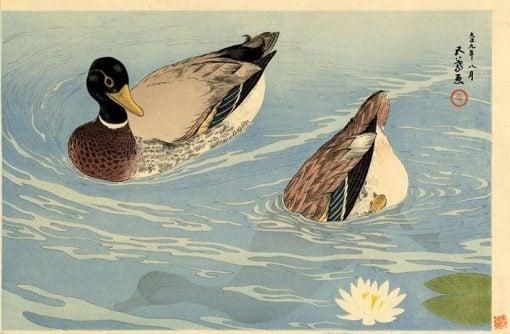 Ducks | Goyo? Hashiguchi | Oil Painting