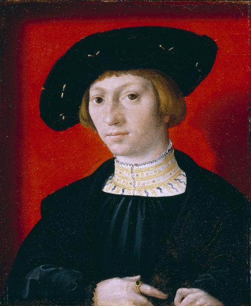 Portrait of a Young Man   Bernaert van Orley   Oil Painting