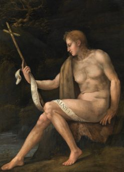 Saint John the Baptist in the Wilderness | Il Bacchiacca | Oil Painting