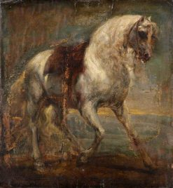 A Grey Horse | Anthony van Dyck | Oil Painting