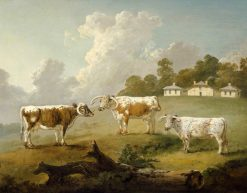 Three Long-Horned Cattle at Kenwood | Julius Caesar Ibbetson | Oil Painting